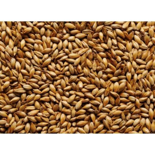 Crystal Malt Grain 1kg - Jo White