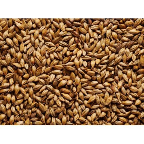 Caramalt Malt Grain 1kg - Jo White
