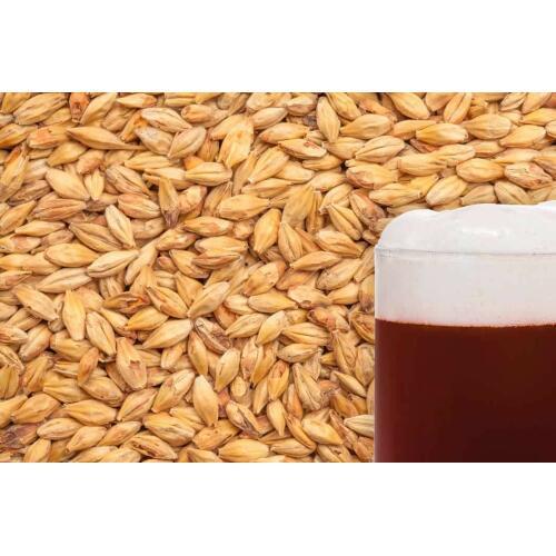 Melanoidin Malt Grain 1kg - Best Malz