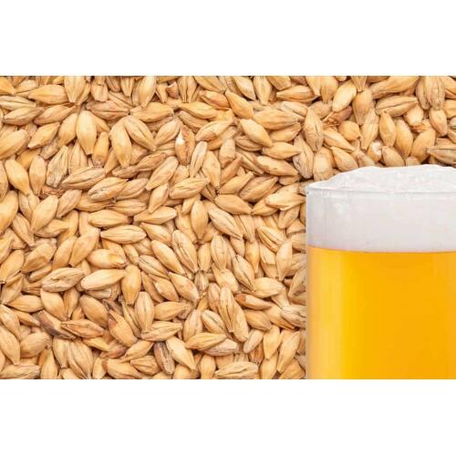 Carapils Malt Grain 1kg - Best Maltz