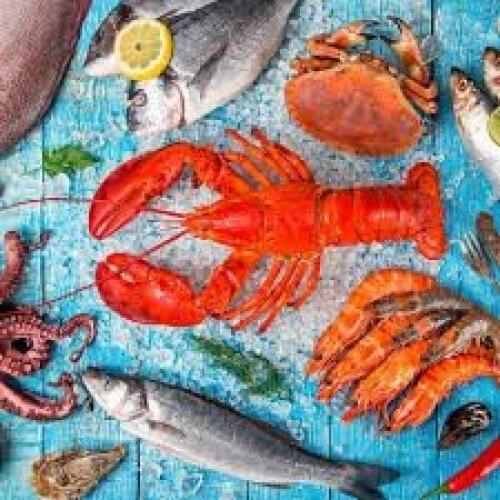 Luncheon Napkins (20) - Seafood